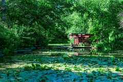 Alfred Caldwell Lily Pool in Chicago. The Alfred Caldwell Lily Pool in Lincoln Park Chicago during summer royalty free stock photography