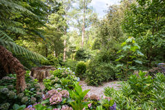 Alfred Nicholas Memorial Gardens Royaltyfri Fotografi