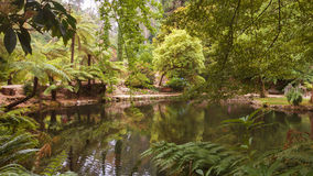 Alfred Nicholas Memorial Gardens Stock Photography