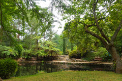 Alfred Nicholas pomnika ogródy Obraz Royalty Free