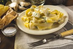Alfredo Pasta Plate mit Käse und Basil Sauce Lizenzfreie Stockbilder