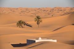Algérien Sahara Images libres de droits
