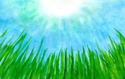 alga illustrazione di stock