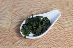 Alga Hiyashi Wakame Nori ou ingrediente do Laminaria para a preparação da sopa de Miso Culinária oriental imagens de stock royalty free
