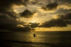 Alga-homem no nascer do sol Fotos de Stock