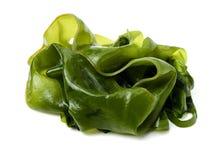 Alga marina comestible fotografía de archivo