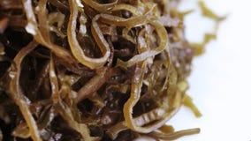 Alga marina comestible en bulto almacen de video