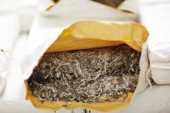 Alga marina presionada en el saco de papel Foto de archivo libre de regalías