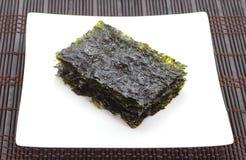 Alga marina secada fotografía de archivo libre de regalías