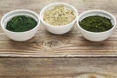 Alga, spirulina e chlorella Imagem de Stock