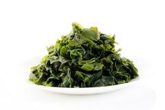 Alga sul piatto bianco Immagine Stock