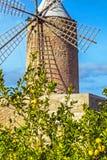 Algadia, Mallorca, Spain, December An old windmill in the city. Algadia, Mallorca, Spain, December 17, 2018 An old windmill in the city stock photo