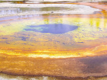 Algae causes vibrant color in Yellowstone thermal pools Stock Photography