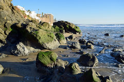 Algae covered boulders on shore of Cress Street Beach  in Laguna Beach, California. Royalty Free Stock Photography