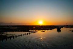 Algae farm field in sunset, Indonesia Royalty Free Stock Image