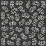 Algae pattern Royalty Free Stock Images