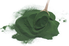 Algae Powder Royalty Free Stock Photo