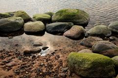 Algae on rocks by river. Green algae on rocks by river with sand in foreground Stock Photos