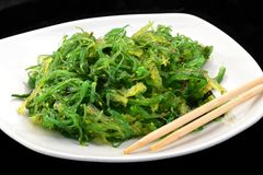 Algae salad Royalty Free Stock Photography
