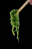 Algae salad. Royalty Free Stock Photos