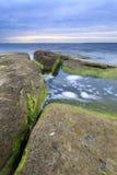 Algaes на больших утесах в море на пасмурном вечере Стоковое Фото