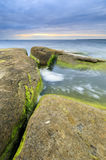 Algaes on large rocks in sea at cloudy evening. Large rocks covered with algae in sea at cloudy evening Royalty Free Stock Image