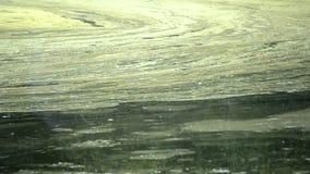 Algal blomvattenyttersida av floden och driva med flöde arkivfilmer