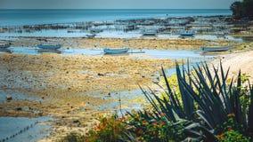 Algal cercano con marea baja de las plantaciones de la alga marina de Fisher Boats - Nusa Penida, Bali, Indonesia Foto de archivo