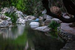 Algar flodkanjon Region Alicante spain Royaltyfria Bilder