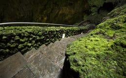 Algar gör Carvao grottor, den Terceira ön, Azores, Portugal Arkivbild