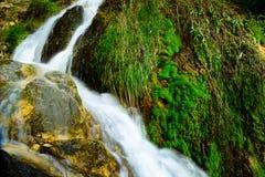 Algar springbrunnAlicante landskap, Spanien Arkivfoton