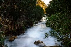 Algar springbrunnAlicante landskap, Spanien Royaltyfri Fotografi