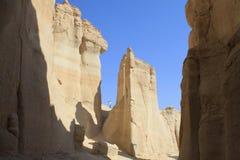 algaraen i lager det sedimentary berg Arkivfoton