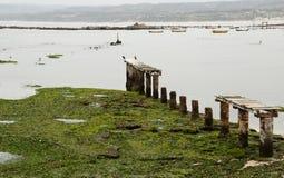 Algarrobo beach Stock Photos