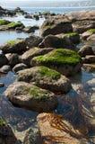 Algarrobo strand Royaltyfria Foton