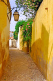 algarve结构葡萄牙silves 免版税库存照片