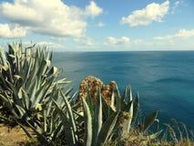 Algarve à Lagos Portugal Photographie stock libre de droits