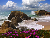 Algarve beach in the spring, Portugal Royalty Free Stock Photo
