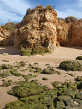 Algarve coast at low tide the ocean Royalty Free Stock Photos