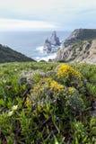 Algarve landskap Royaltyfri Foto