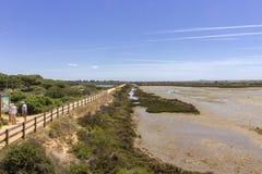 Algarve QDL krajobraz przy Ria Formosa bagien rezerwą Obrazy Stock
