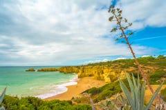 Algarve-Sommer Stockbild