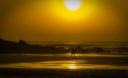 Algarve wybrzeże Fotografia Stock