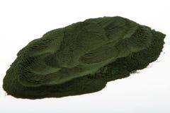 Algas del polvo de Spirulina Fotos de archivo libres de regalías