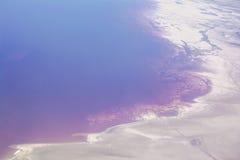 Algas rojas en el Great Salt Lake Fotos de archivo libres de regalías