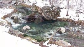 Algas y agua de la turquesa en paisaje del invierno almacen de video