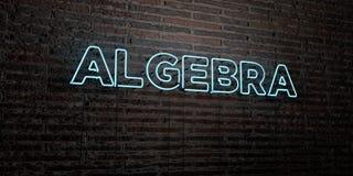 ALGEBRA - Realistyczny Neonowy znak na ściana z cegieł tle - 3D odpłacający się królewskość bezpłatny akcyjny wizerunek Zdjęcie Royalty Free