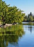 Algemeen San Martin Park in Mendoza, Argentinië stock fotografie