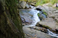 Algen auf Felsen: Wasserfall-Wanderung Lizenzfreie Stockfotos