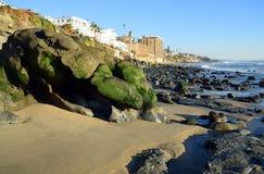 Alger täckte stenblocket på kust av Cress Street Beach i Laguna Beach, Kalifornien Arkivfoton